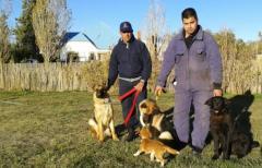 Unidad canina de busqueda y rescate